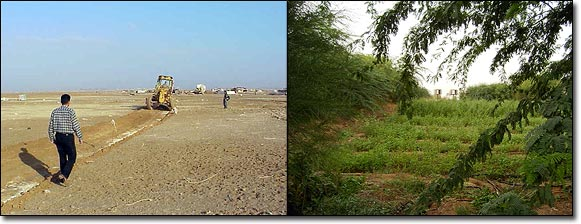 before_after_field_jordan