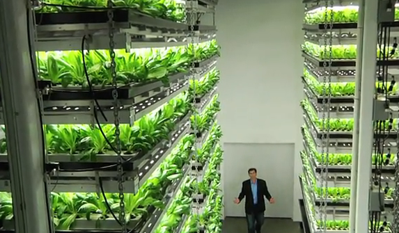 Vertical Farming Viable Agriculture Or Urban Pipedream