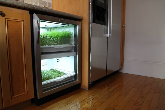 Automated undercounter garden promises zero-mile micro-greens and ...
